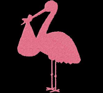 Cicogna rosa